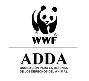 Derecho de animales en Barcelona